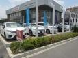 Honda Cars埼玉南 朝霞店 認定中古車取扱 U−Selectコーナーの店舗画像