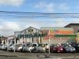 石上産業株式会社 マイカーランドイシガミ 月寒店の店舗画像