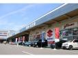 エフエルシー株式会社 スズキアリーナ羽島インターの店舗画像