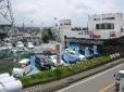 KOWA 静岡県東部自動車販売協会加盟店 の店舗画像