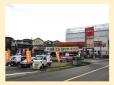 プラザ紅陽 の店舗画像