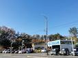 オートライフM.T.Grand 桑名店の店舗画像