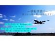 タイニーユナイテッド の店舗画像