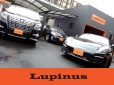 TOTAL CAR SHOP Lupinus の店舗画像