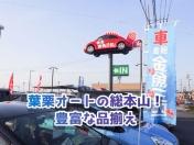 [愛知県]頭金 金魚三匹 (株)葉栗オートショップ 木曽川本社営業所