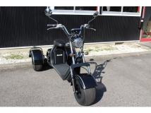 ブレイズEVトライク 三輪トライク 公道走行可・EV・車検不要・ヘルメット不要