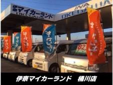 伊奈マイカーランド 桶川店の店舗画像