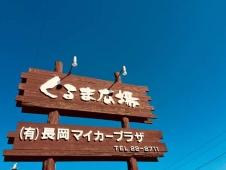 くるま広場 (有)長岡マイカープラザ の店舗画像