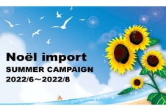Noel import ノエルインポート の店舗画像